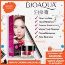 Bioaqua Lipstik Pot Cushion Brush Original Murah Bandung